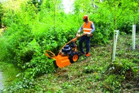 Forstmaschine AS 65 Scout bei Julmi in Porta Westfalica kaufen