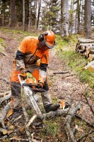 Forstwirschaft