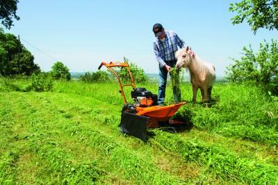 Forst- und Gestrüppmäher