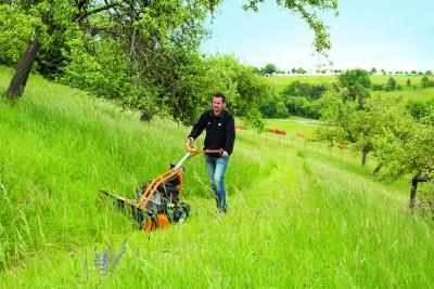 Rasenmäher für hohes Gras mit Zweitaktmotor AS 63 2T bei Julmi in Porta Westfalica kaufen